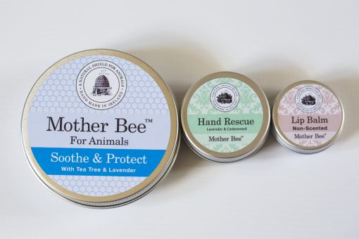 Mother Bee Starter Kit